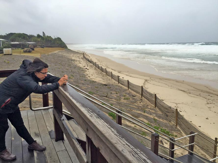 BEFORE: Deputy Mayor Paul Spooner's image showing the Interim Beach Access Stabilisation (IBAS) works (plus his partner Mariana!) before the storm hit.